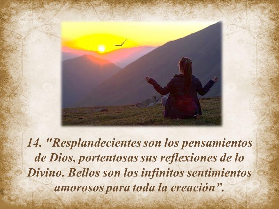 Jesus Maxima 14
