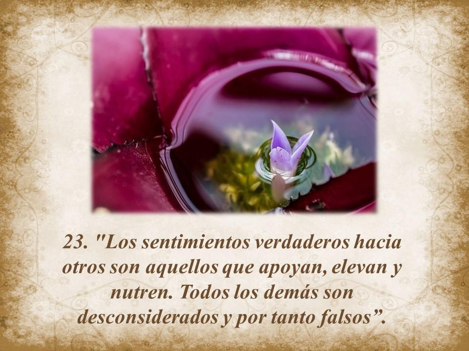 Jesus Maxima 23