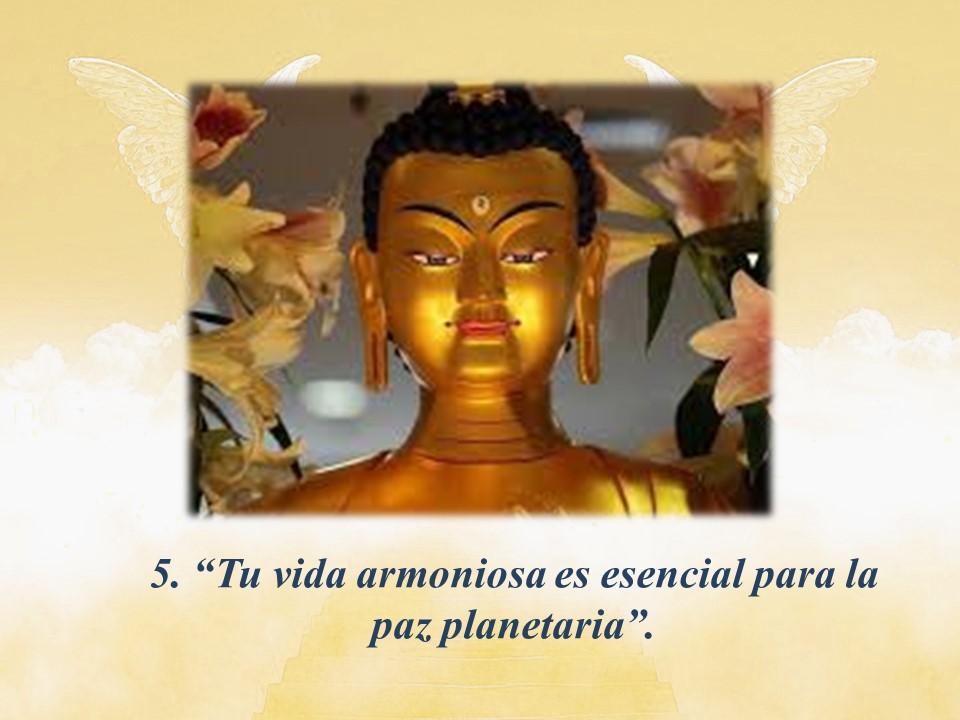 MaitreyaMáxima5